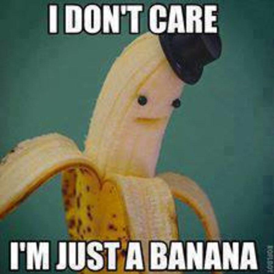 Just a Banana meme