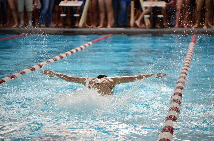 Keriann Ferguson leads as she competes in butterfly, soon to finish first.