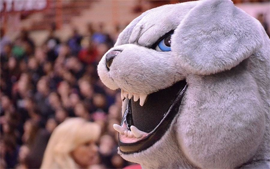 The bulldog mascot cheers on the crowd at the pep rally on Tuesday.