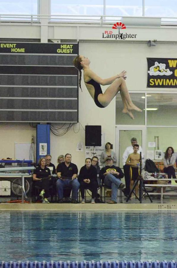 Caroline McMillin does a front somersault tuck dive.