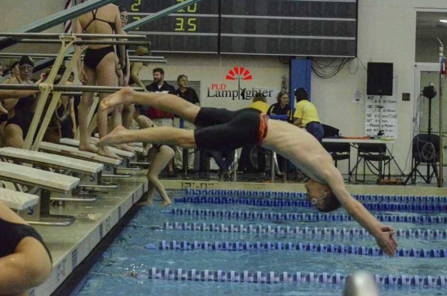 Swimmer Ben McKeown dives in during warm ups