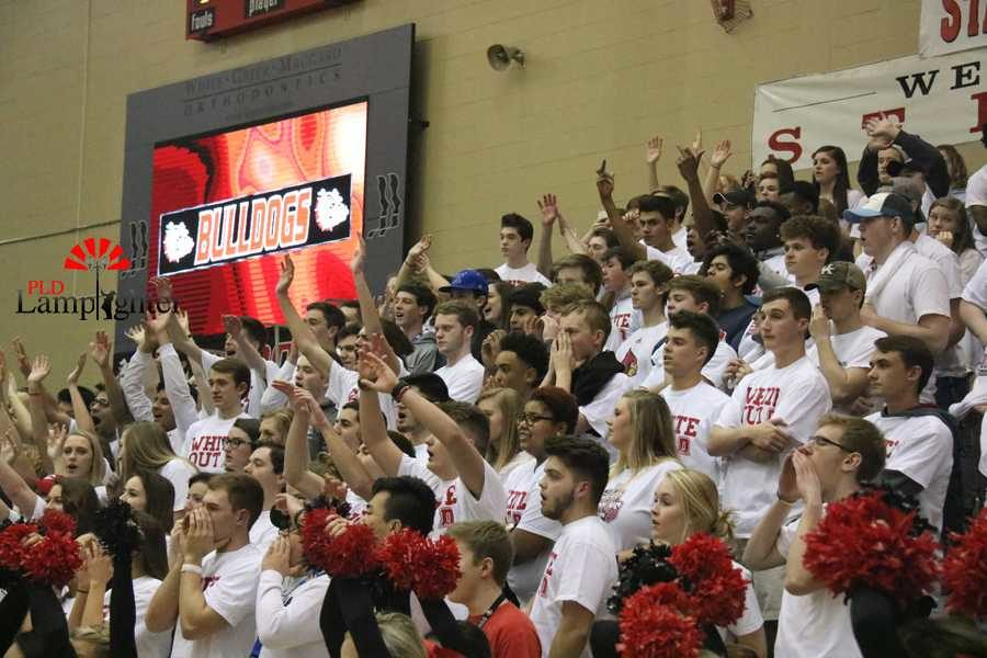 The Dog Pound section cheers on the team.