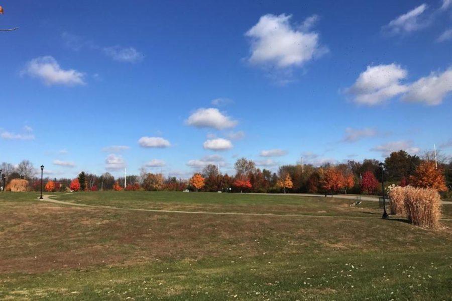Kentucky during the fall season in late November.