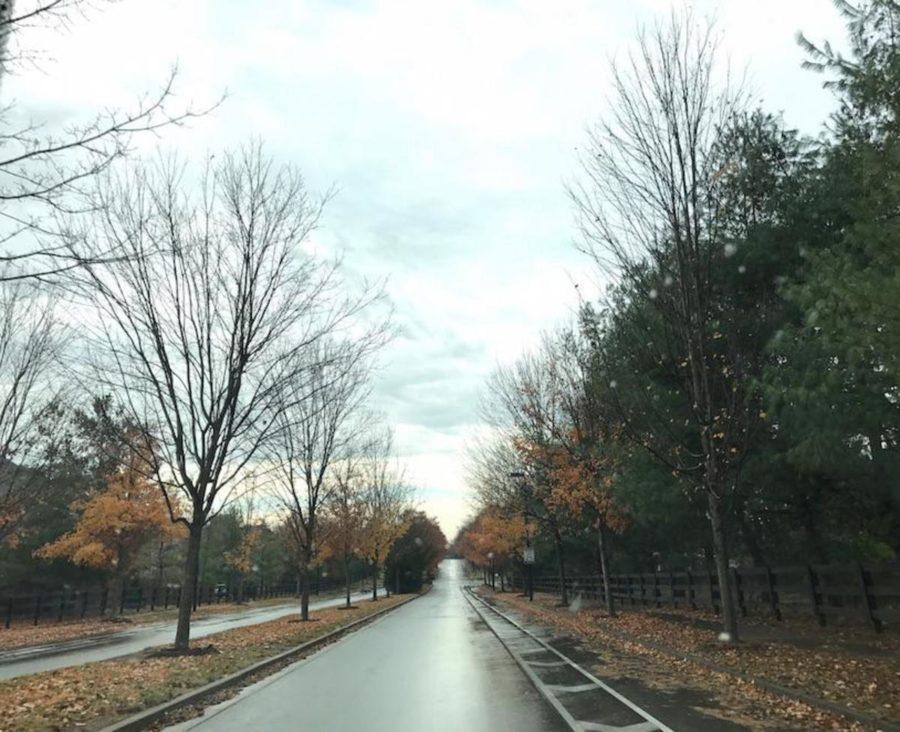 The rainy fall of Kentucky.