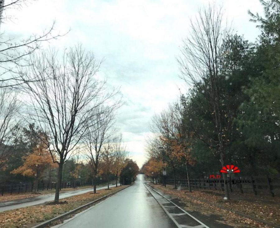 The rain-abundant fall season of Kentucky.
