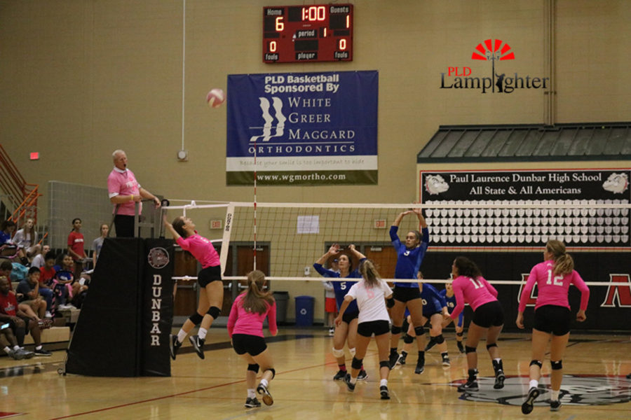 #6 Senior, Macy Jundi takes an aggressive swing at the net for a kill.