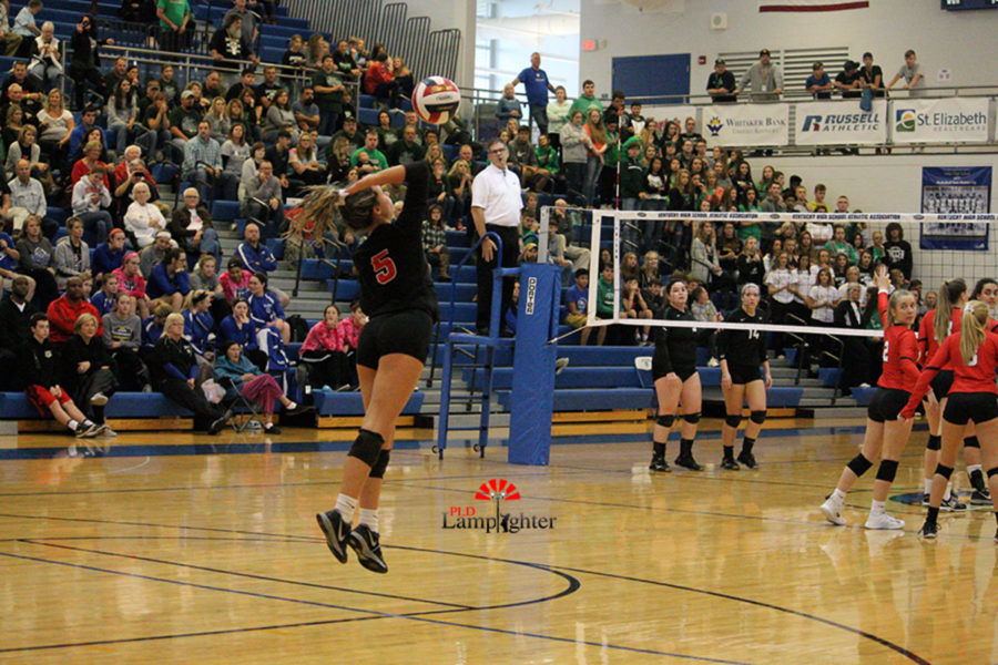 #5 Senior Allie Chapman starting the play with a jump serve.