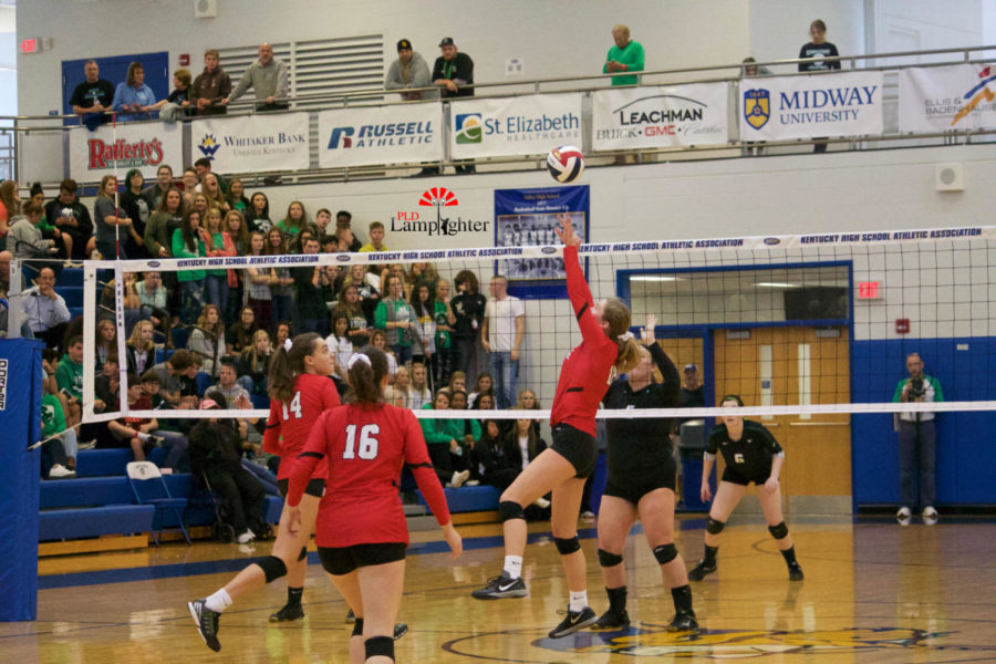 #12 Junior Meredith Phillips sets up the ball for a hit.