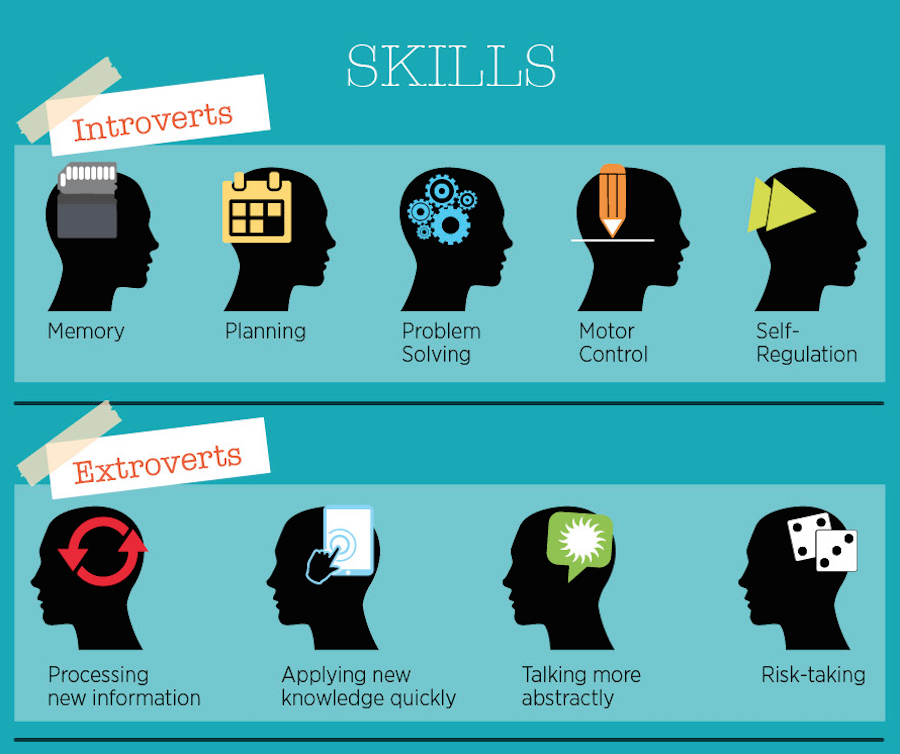 People often have different skill sets based on their introversion or extraversion.