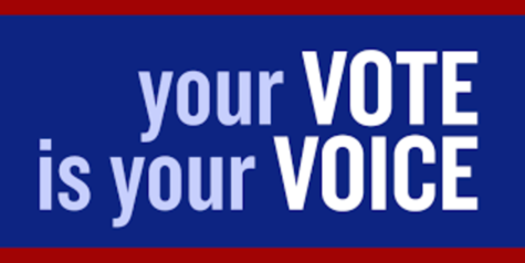 Young Democrats Hold Voter Registration Drive