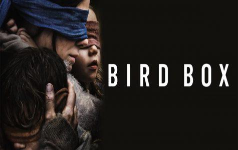 Birdbox: Don't Open Your Eyes