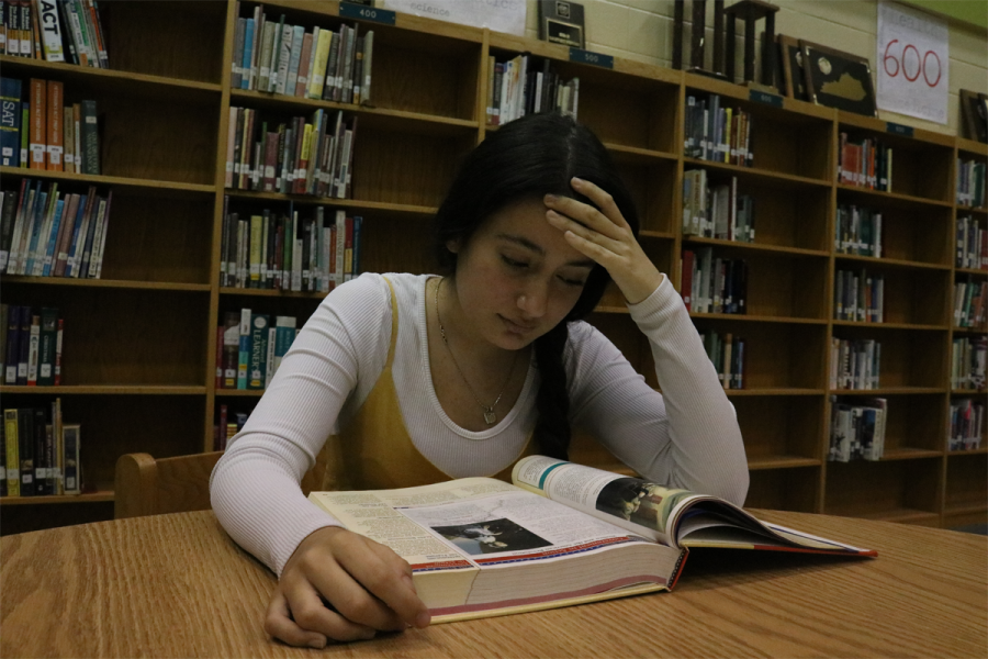 Freshman Victoria Bravo studying from an AP test review book