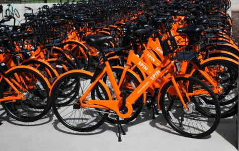 Take a Spin on These Rental Bikes