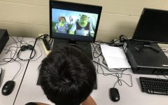 Why Shrek is a Mental Health Role Model
