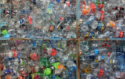 Four Plastic Items to Stop Using Right Now