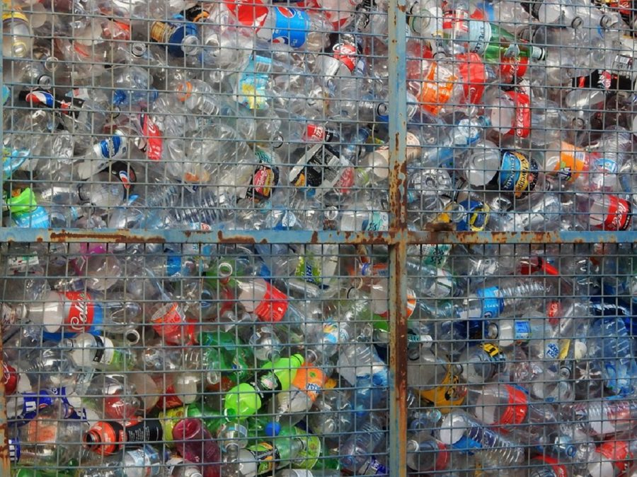 Plastic pollution is plaguing planet Earth and it is our job to fix it