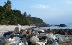 So much trash is left on beach shorelines, leaving it to float in the oceans.