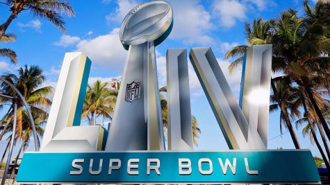 Super Bowl Preview