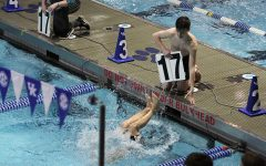 Boys' Swim Team Sweeps the State Finals