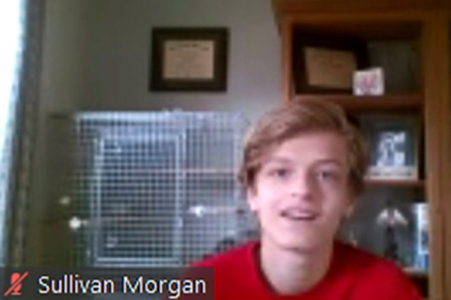 Sullivan Morgan