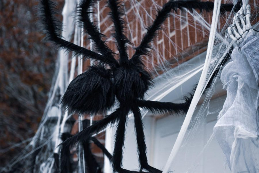 A creepy-crawly spider lurks in the webs it's spun upon the home of an unsuspecting family.