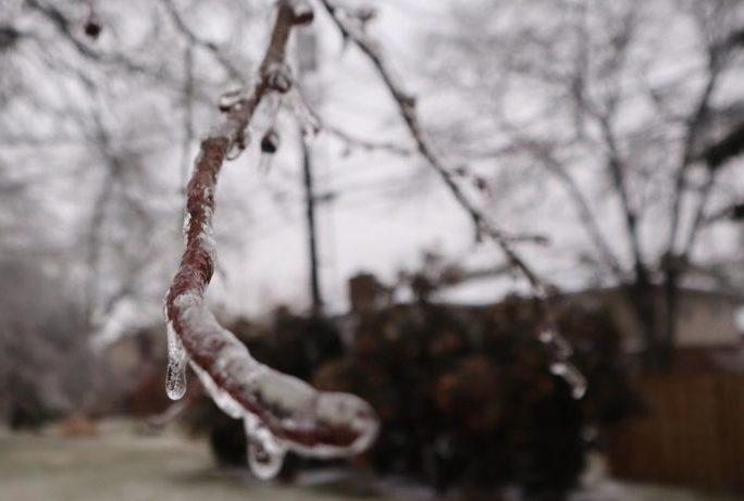 Ice Storm Hits Lexington