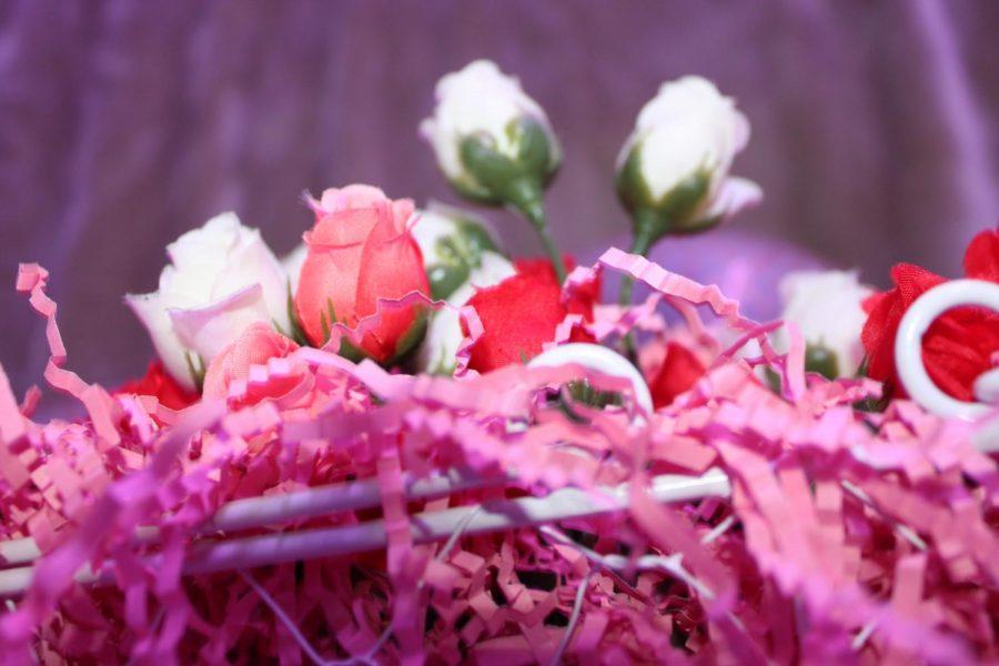 sonja castro- valentines article