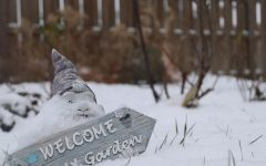 Although the leaves and flowers are gone for the year, snow-covered gardens still provide a beautiful sight.