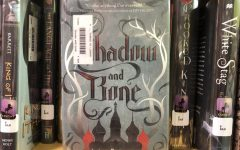 The Shadow and Bone series by Leigh Bardugo is available in the PLD library.